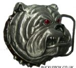 British Bulldog Head Belt Buckle + display stand. Code AA4